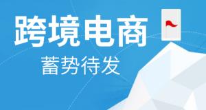 上海跨境电商系统软件价格多少呢?