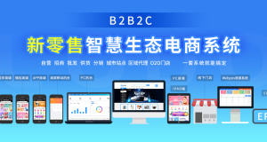 b2b2c多用户商城系统有哪些优势?