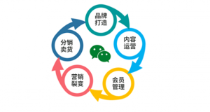 上海微信分销订货系统开发服务商有哪些?