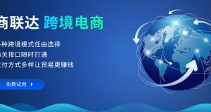 怎么选择跨境电商系统源码服务商