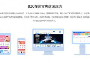 商联达详解|B2C自营商城搭建类型